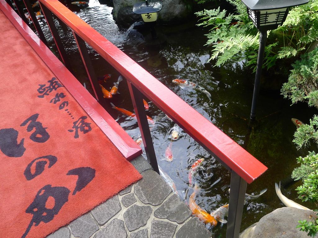 庭園 - 鯉離れの宿 ほのかの画像